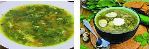 Супа от коприва. Лесна, класическа и още 10+ вкусни рецепти