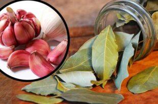 магия с чесън и дафинов лист
