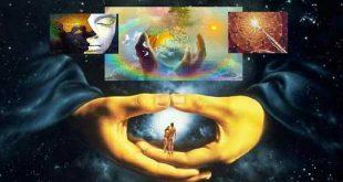 Цикли на живота, път на живота 7
