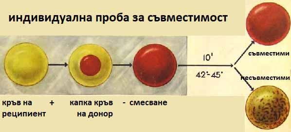 Човек или пришълец? Rh (-) издава нечовешко ДНК. Вижте от кои сте!