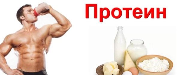 proteinova-dieta-02