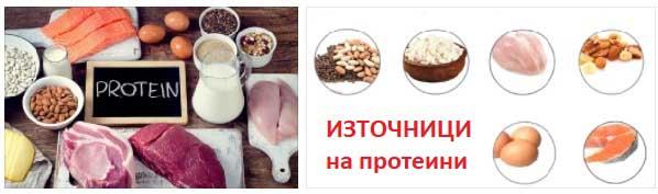 proteinova-dieta-03