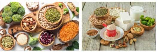 proteinova-dieta-04